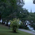 Correr en Estocolmo; disfruta el running por la capital de Suecia