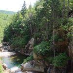 paisaje típico en Flume Gorge
